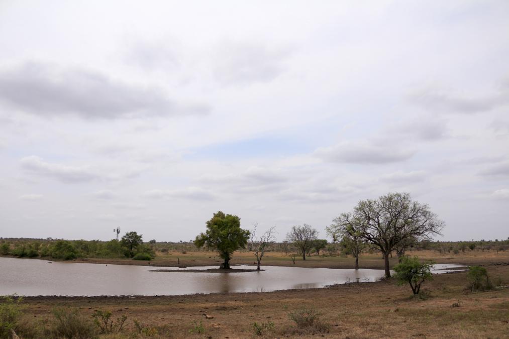 Lac du Kruger National Park