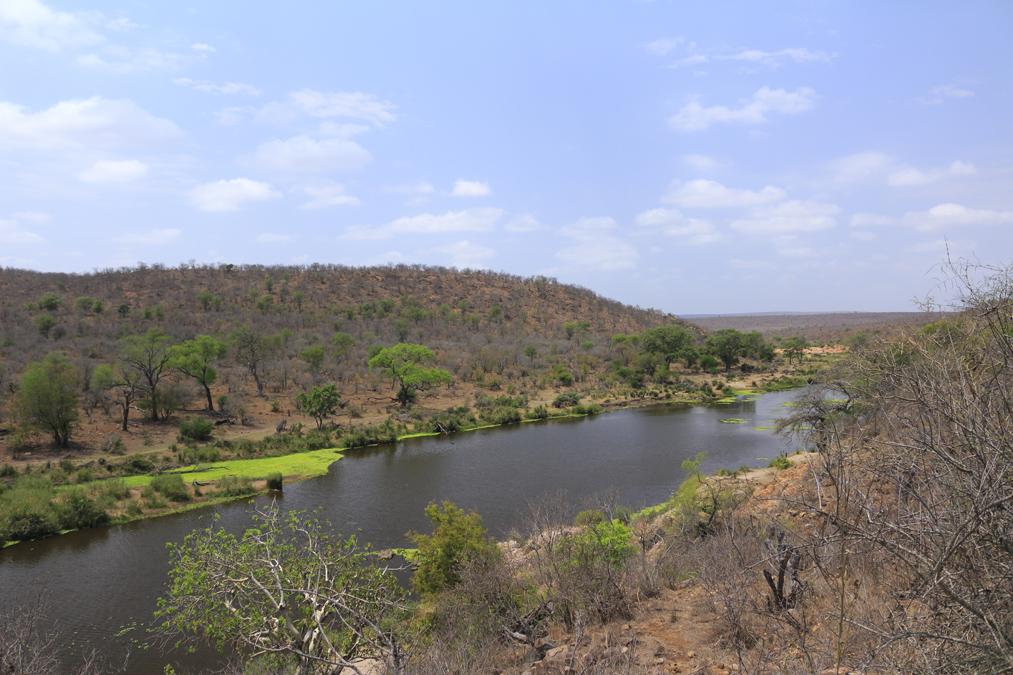 Rivière du Kruger National Park
