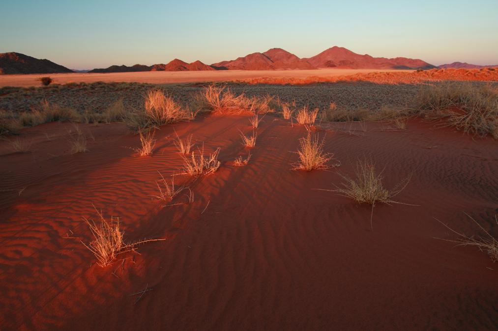 Namib Desert en Namibie