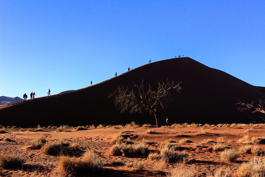 Dune 45 de Sossusvlei en Namibie