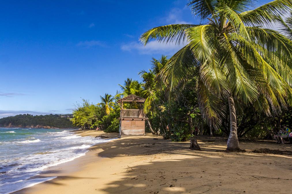 Anse l'Étang en Martinique