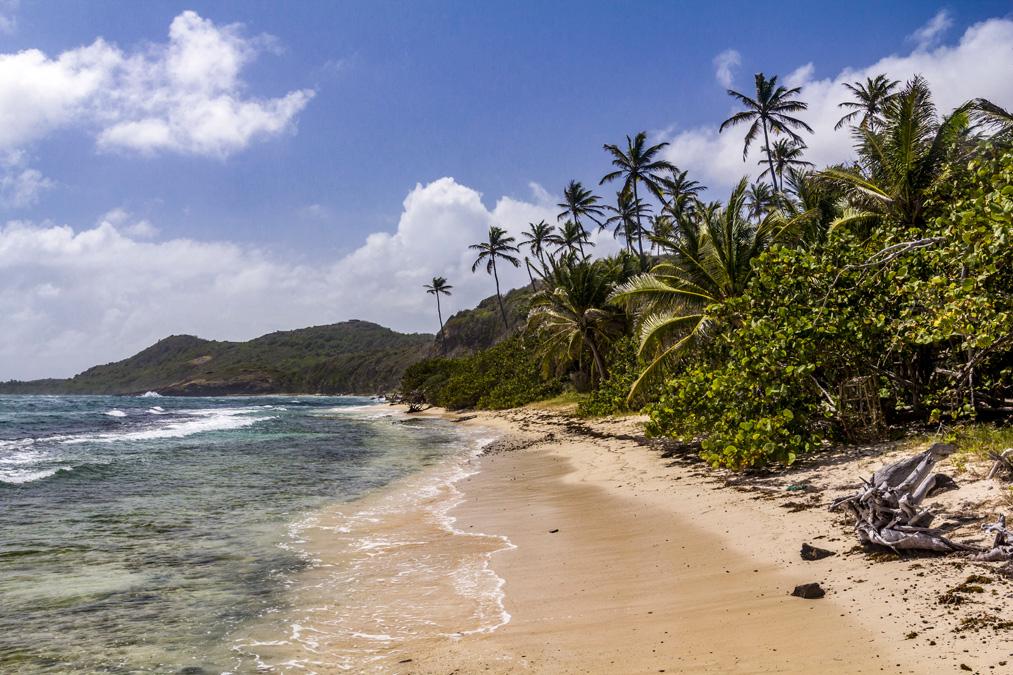 Anse la Balle en Martinique