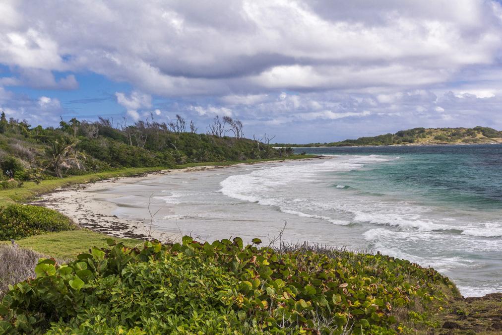 Anse Trabaud en Martinique