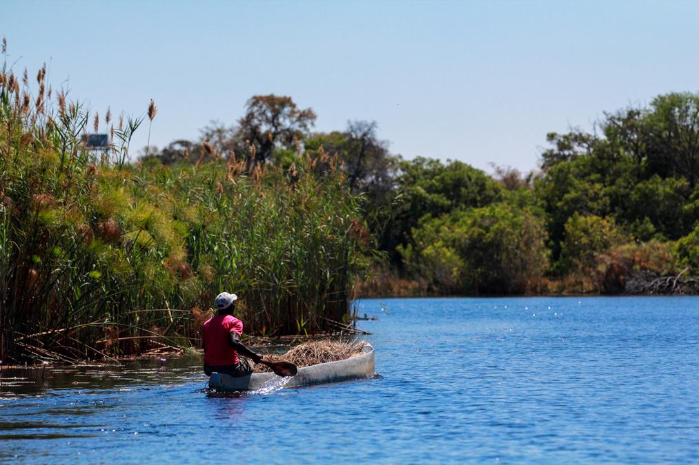 Mokoro sur l'Okavango Delta au Botswana