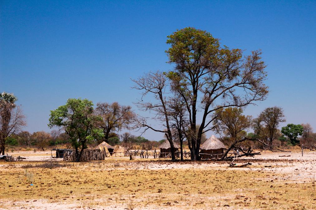 Village de l'Okavango Delta au Botswana
