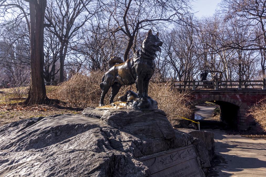 Balto Statue de Central Park à New York
