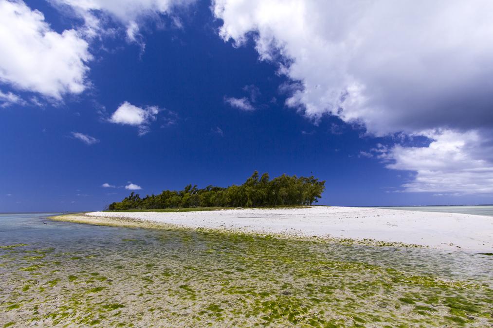 Île aux Cocos à Rodrigues