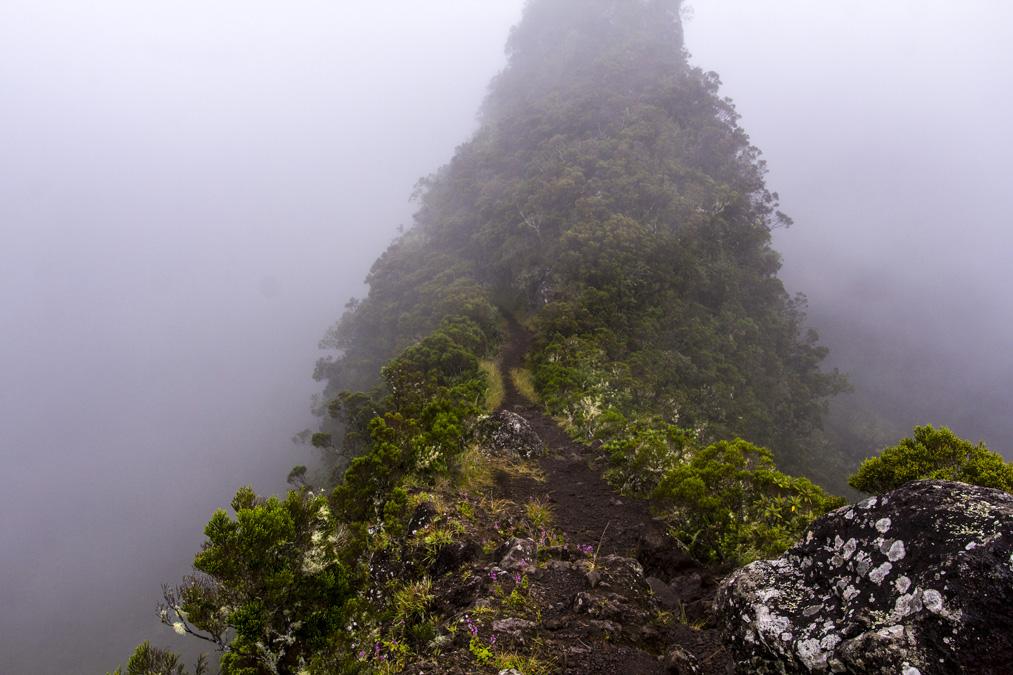 Crête des Deux Fesses (sentier Scout) à la Réunion