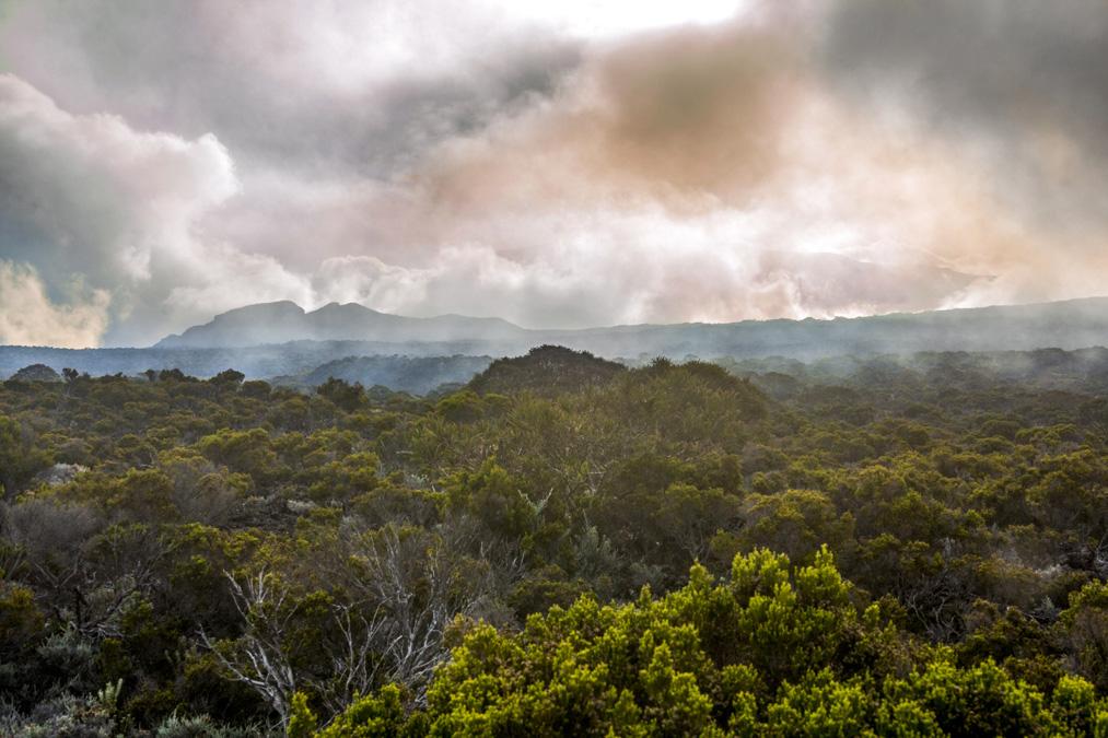Éruption du Piton de la Fournaise de Mai 2015 à la Réunion