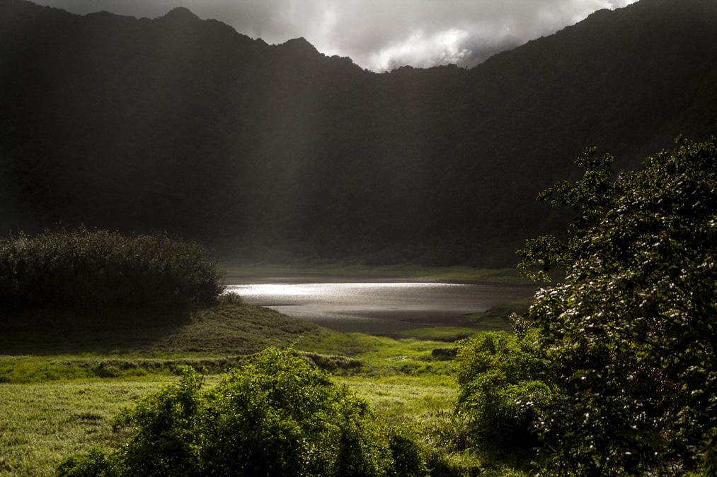 Grand Étang à la Réunion