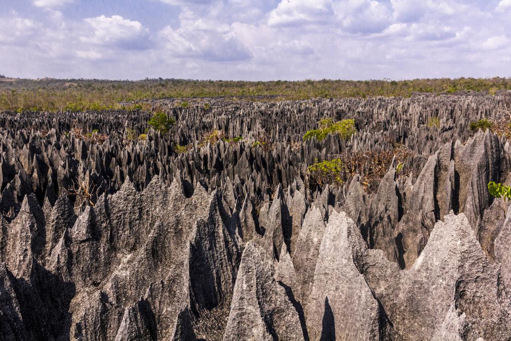 Circuit Ranotsara (Grand Tsingy) à Madagascar