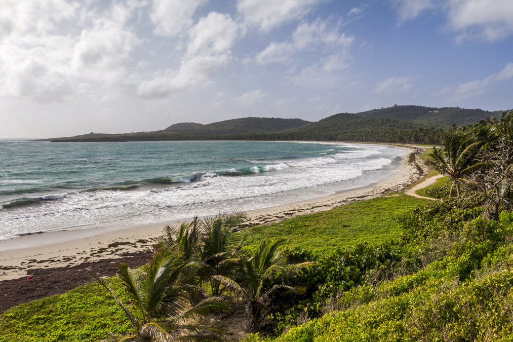 Anse du Grand Macabou en Martinique