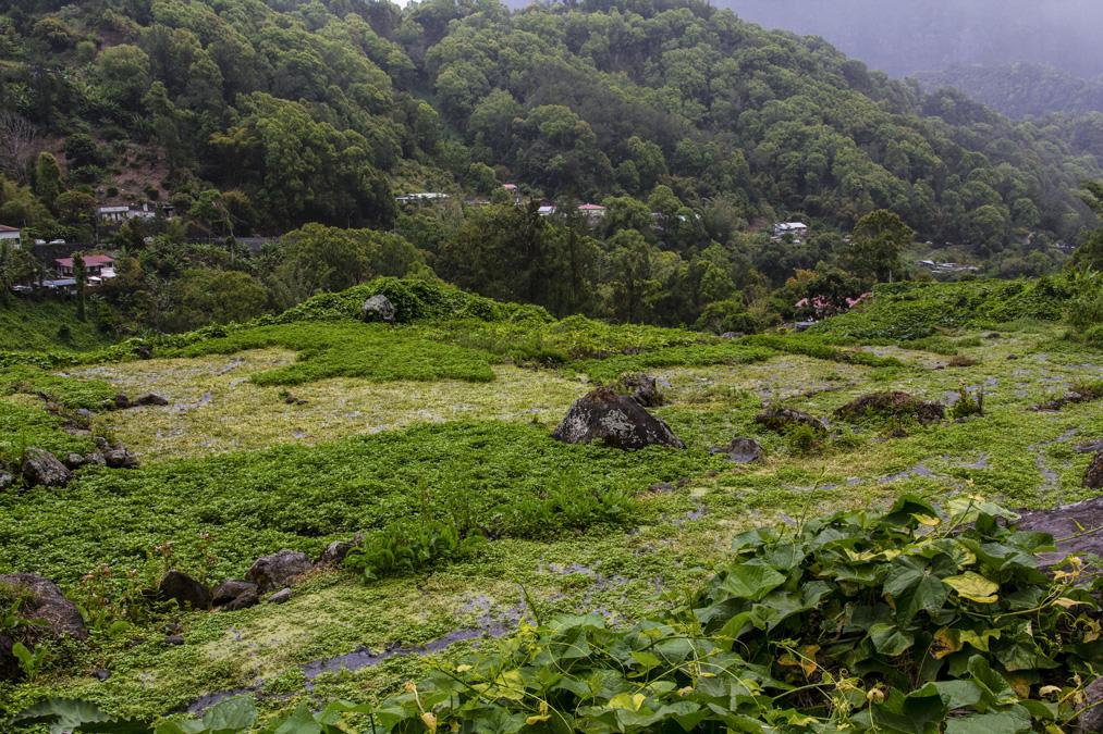 Hell-Bourg à la Réunion