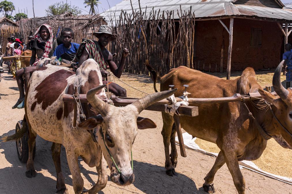 Village de Manja à Madagascar