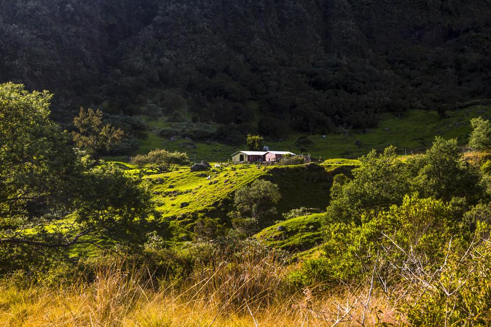 Marla à la Réunion