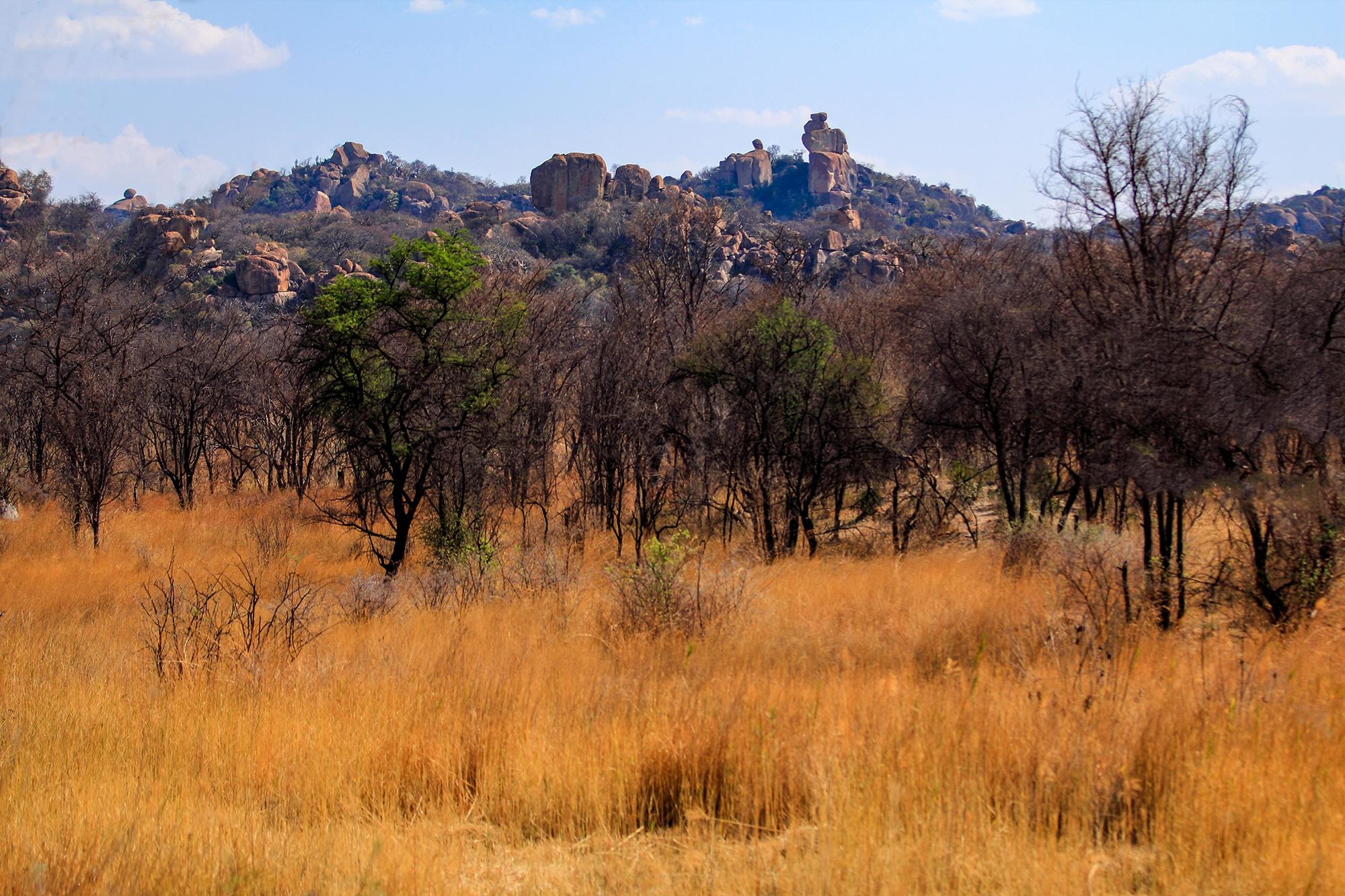 Matobo National Park au Zimbabwe par Guillaume Projetti