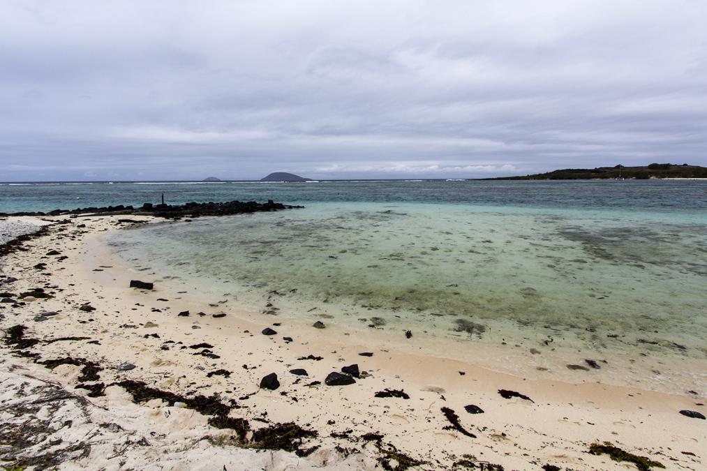 Île Plate à Maurice