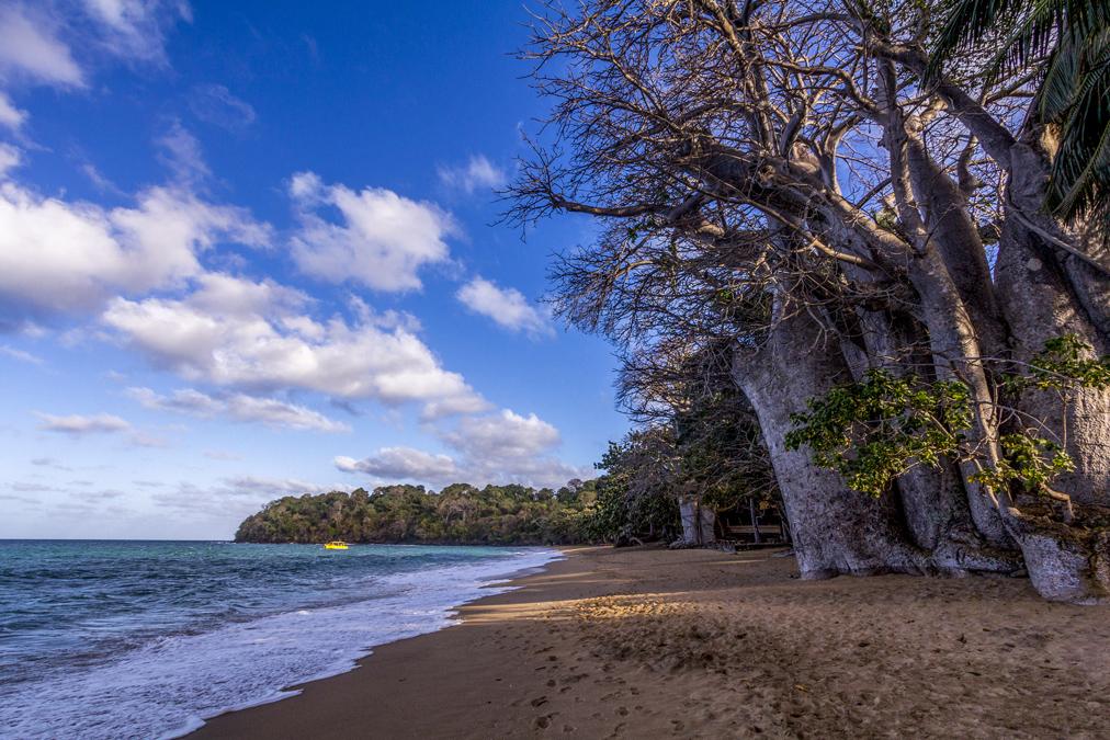 Plage de N'Gouja à Mayotte