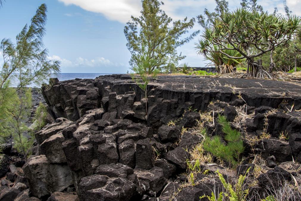 Orgues basaltiques à la Réunion
