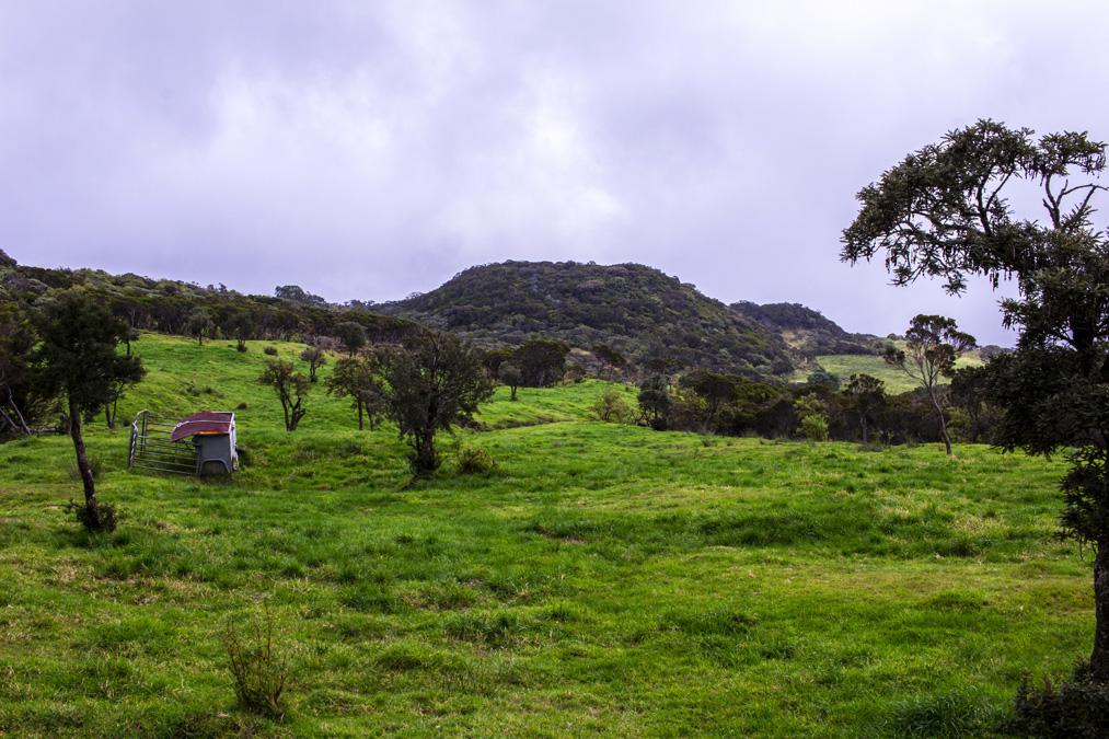 Piton de l'Eau à la Réunion