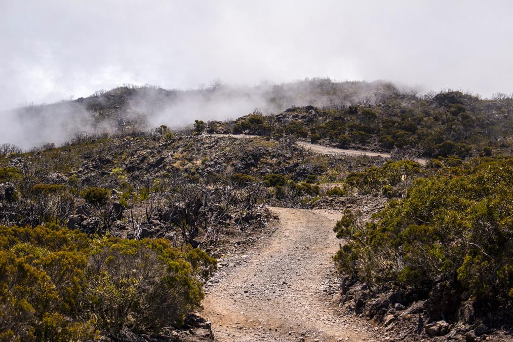 Randonnée du Maïdo au Grand Bénare à la Réunion