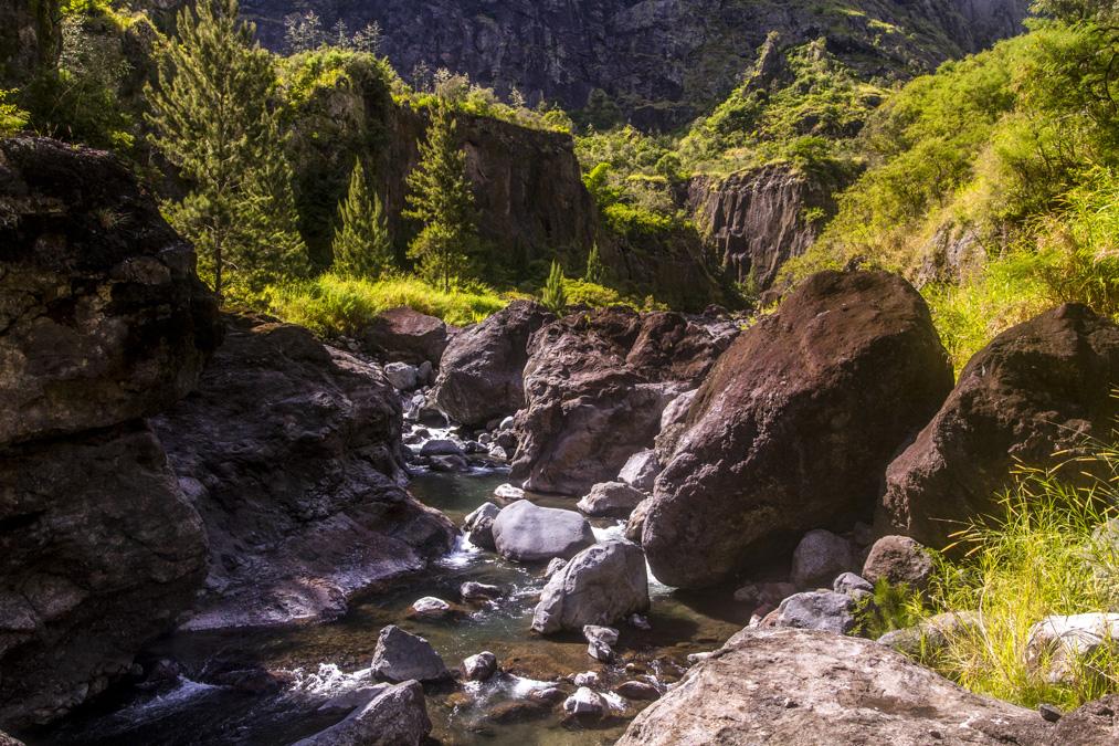 Ravine de Roche Plate à la Réunion