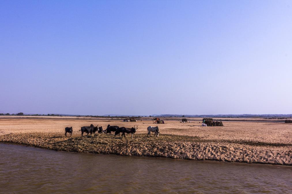 Rivière Tsiribihina à Madagascar