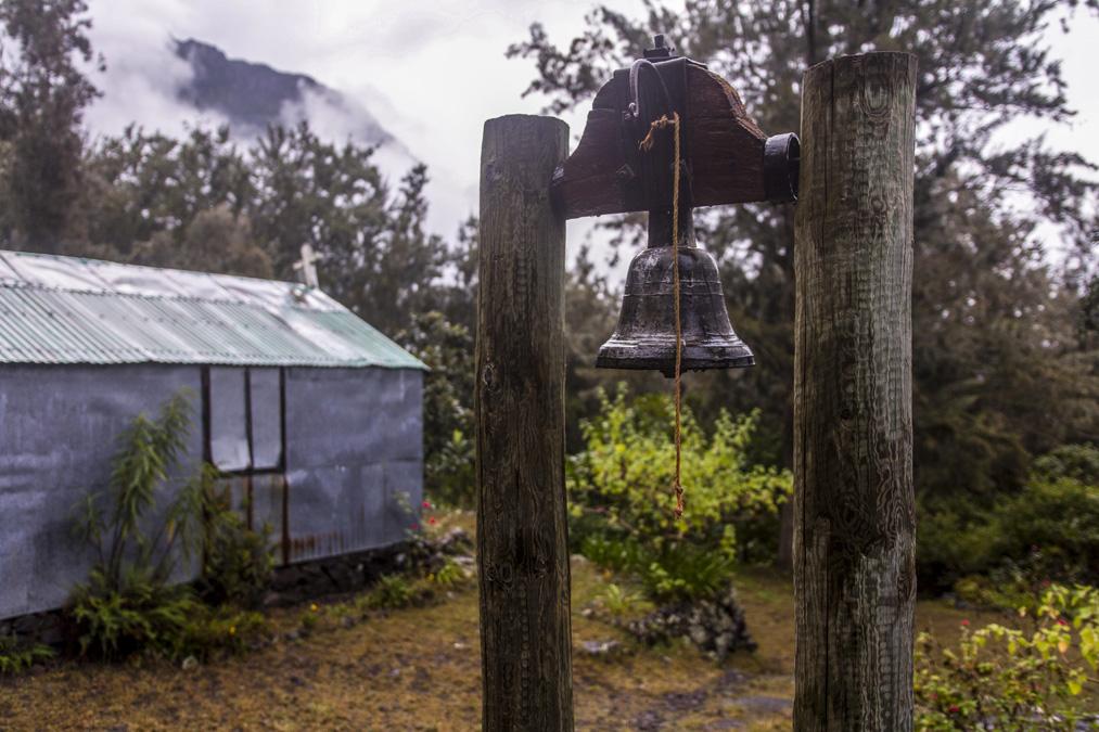 Roche Plate à la Réunion