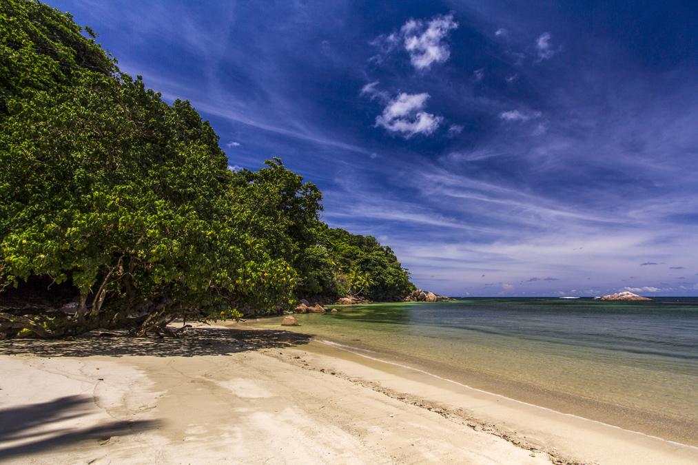 Anse Marie-Louise (Praslin) aux Seychelles