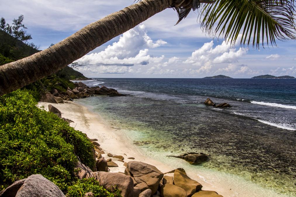 Anse Fourmis (La Digues) aux Seychelles