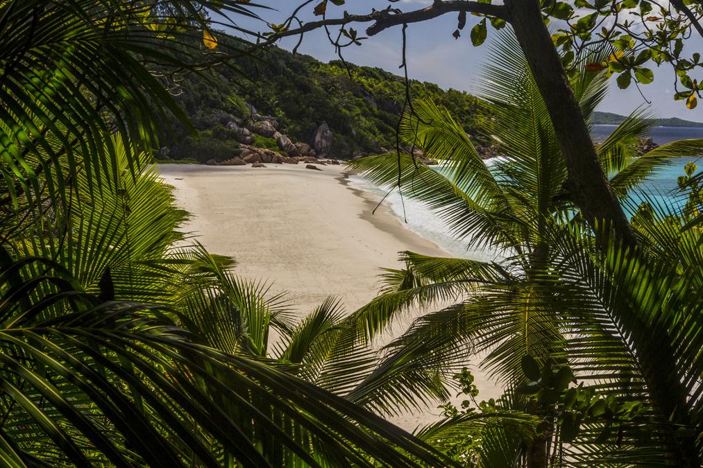 Petite Anse (La Digue) aux Seychelles