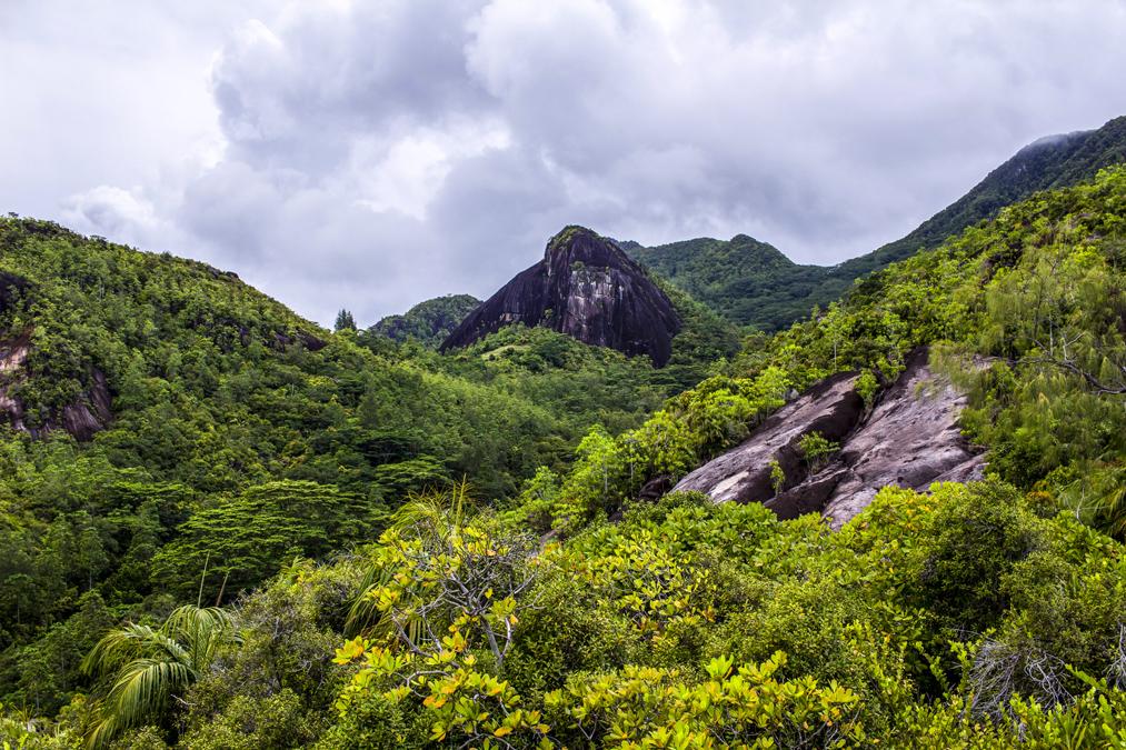 Randonnée de anse Major (Mahé) aux Seychelles