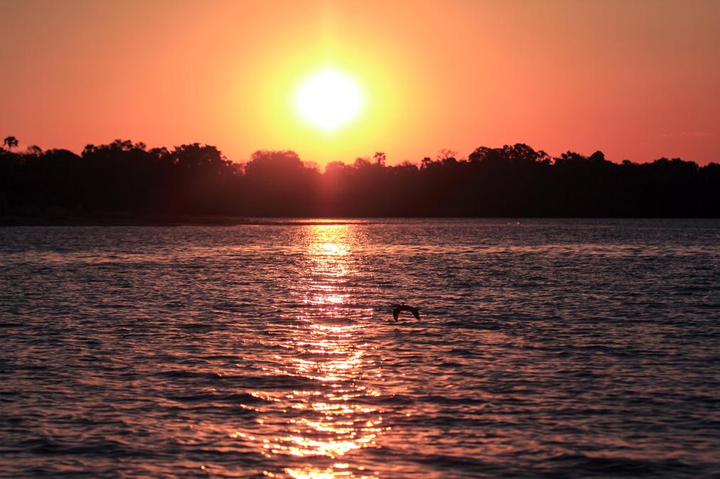 Coucher de soleil sur le Zambèze au Zimbabwe