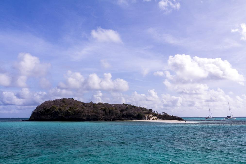 Baradal des Tobago Cays aux Grenadines