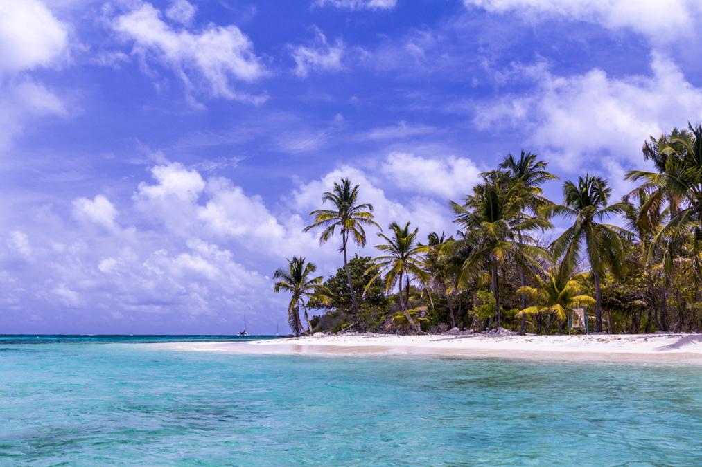 Plage de Petit Bateau des Tobago Cays aux Grenadines