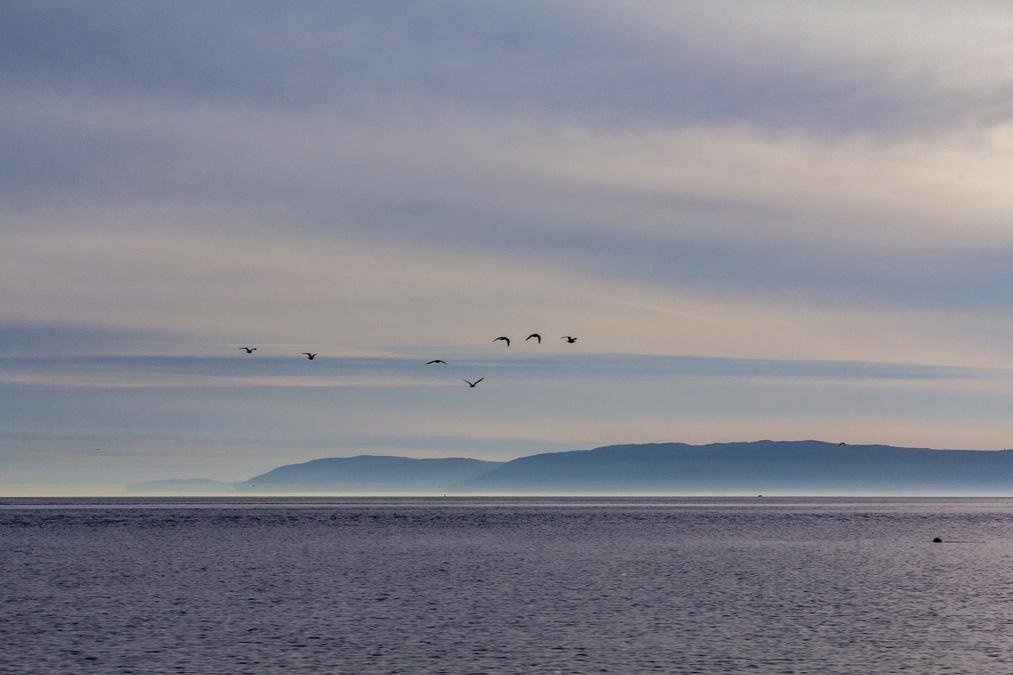 Fjord-du-Saguenay au Canada