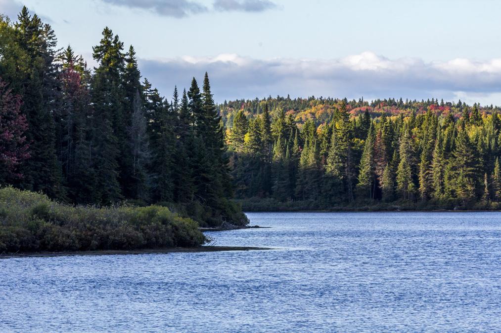 Lac Edouard dans le Parc National de la Mauricie au Canada