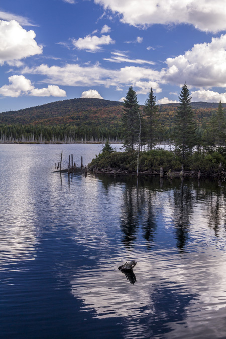 Lac Hélène dans le Parc National du Mont Tremblant au Canada