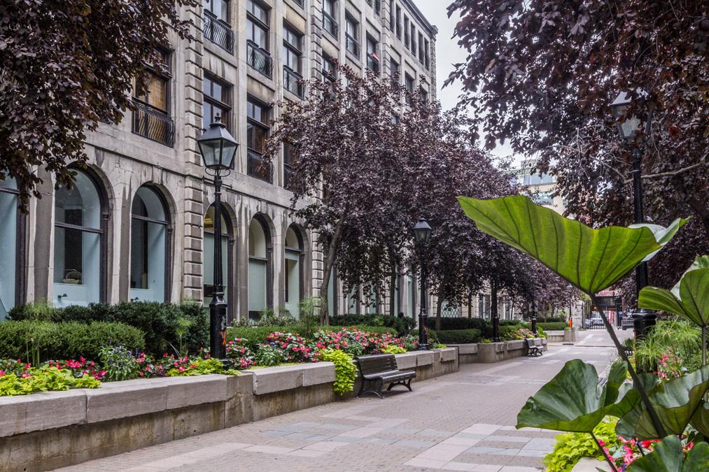 Quartier Vieux-Montréal au Canada