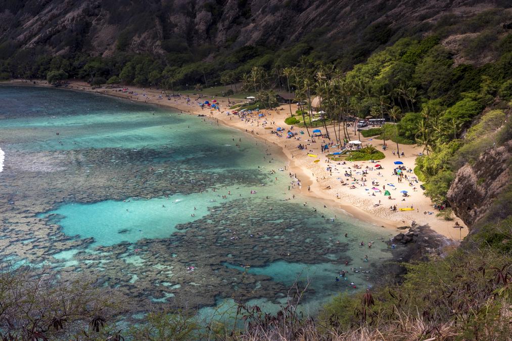 Hanauma Bay Nature Preserve sur l'île Oahu de l'archipel d'Hawaï