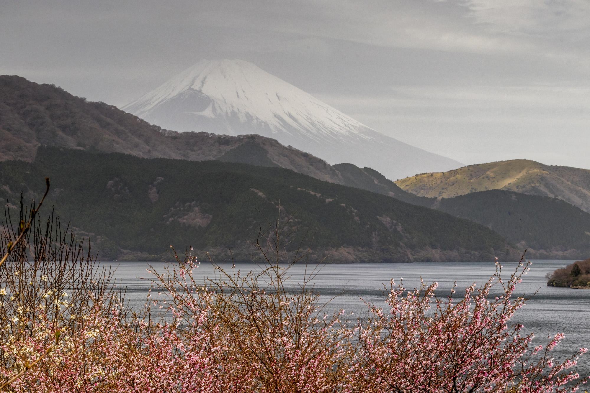Fujisan dans la ville de Hakone au Japon