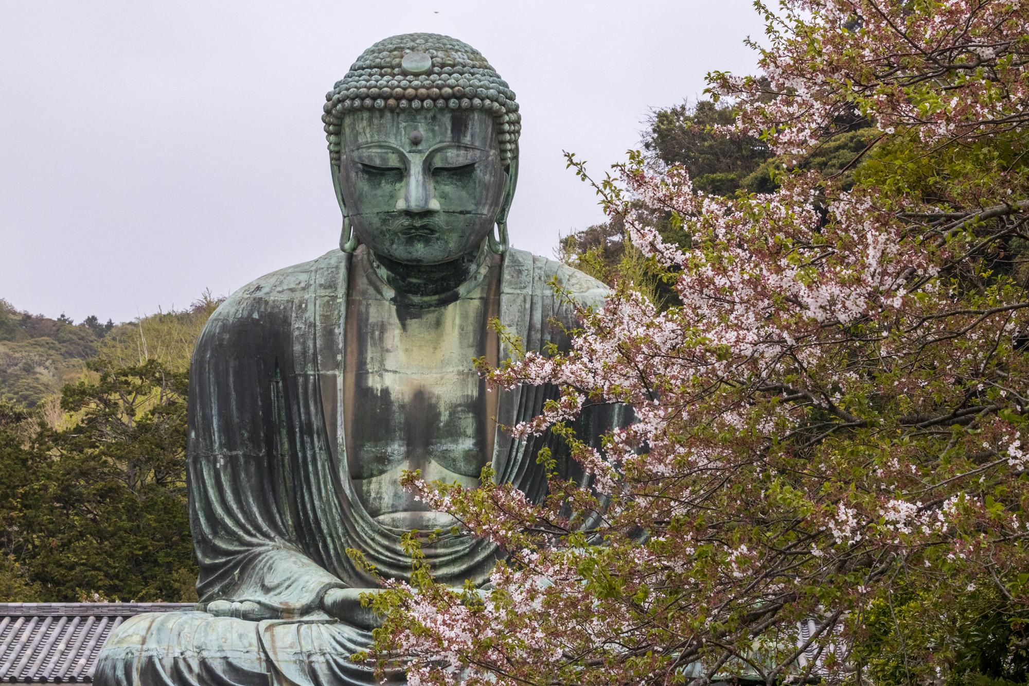 Kōtoku-in dans la ville de Kamakura au Japon