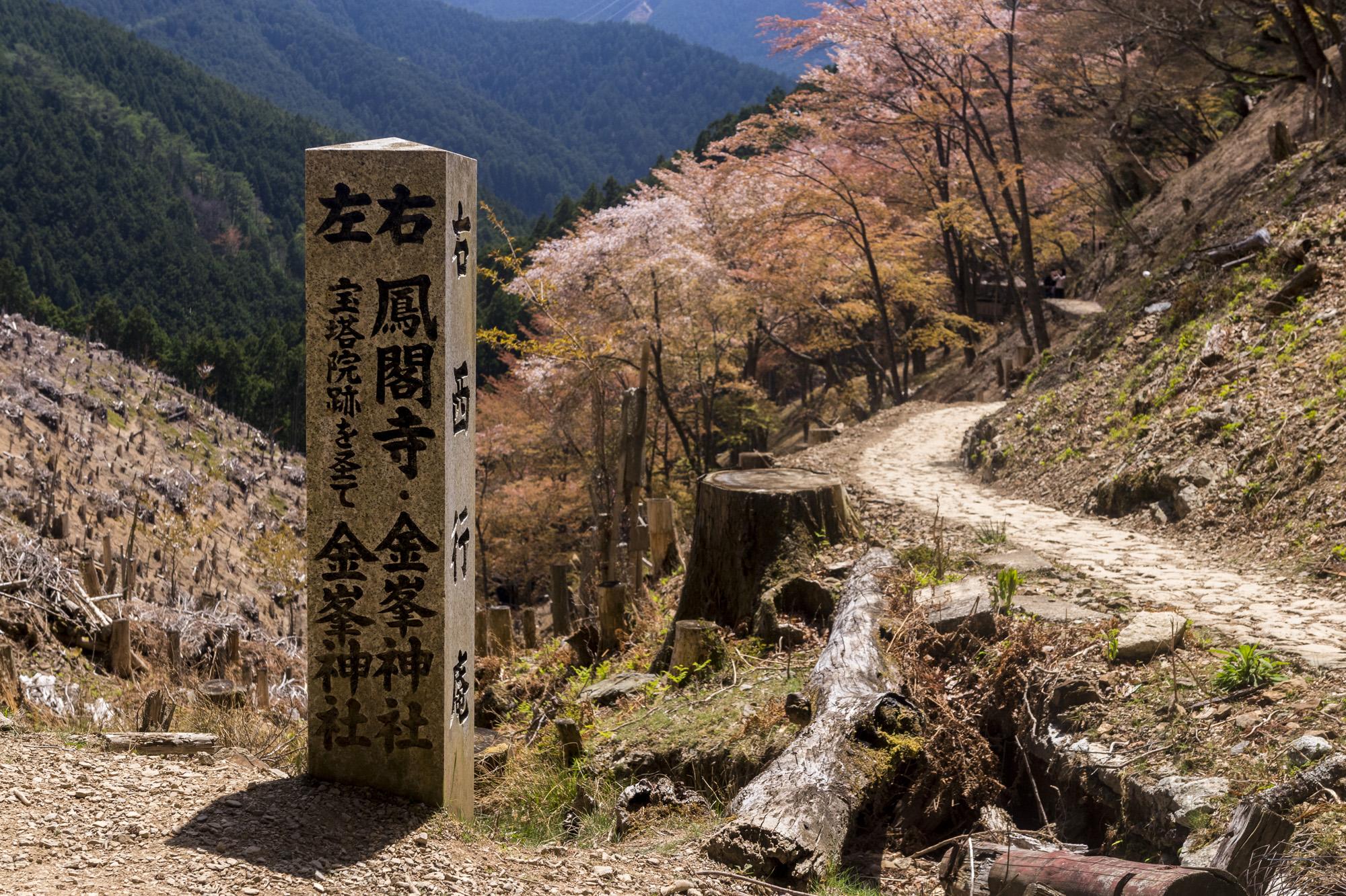 Oku Senbon dans le Mont Yoshino au Japon