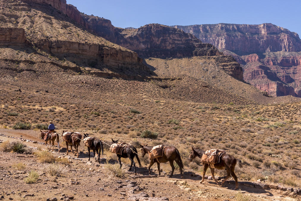 South Kaibab Trail du Grand Canyon National Park aux Etats-Unis